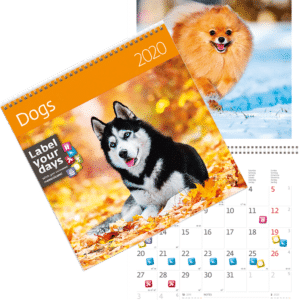 Calendrier mural Chiens 2020