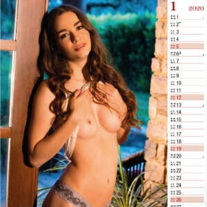 Calendrier Dream Exclusive 2020 Janvier