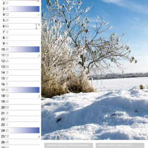 Calendrier mural Sunny Days 2021 Janvier