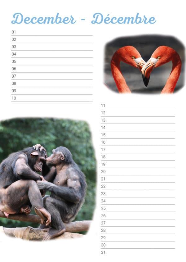 Calendrier d'anniversaire 'Animals in Love' Décembre