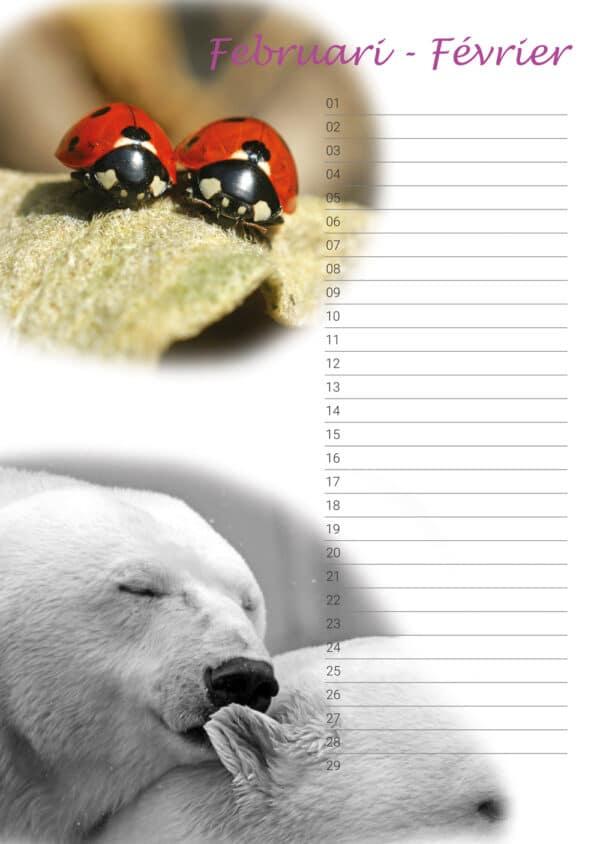 Calendrier d'anniversaire 'Animals in Love' Février