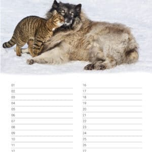 Calendrier d'anniversaire 'Animals in Love' Janvier