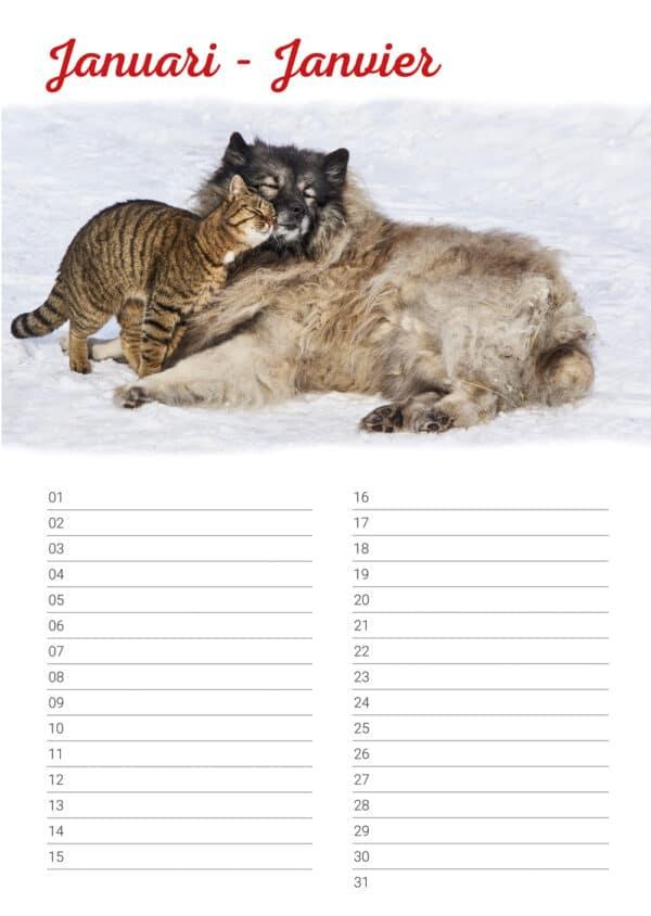 Calendrier d'anniversaire 'Animals in Love' Janvier
