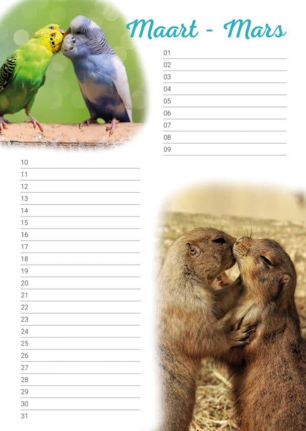 Calendrier d'anniversaire 'Animals in Love' Mars