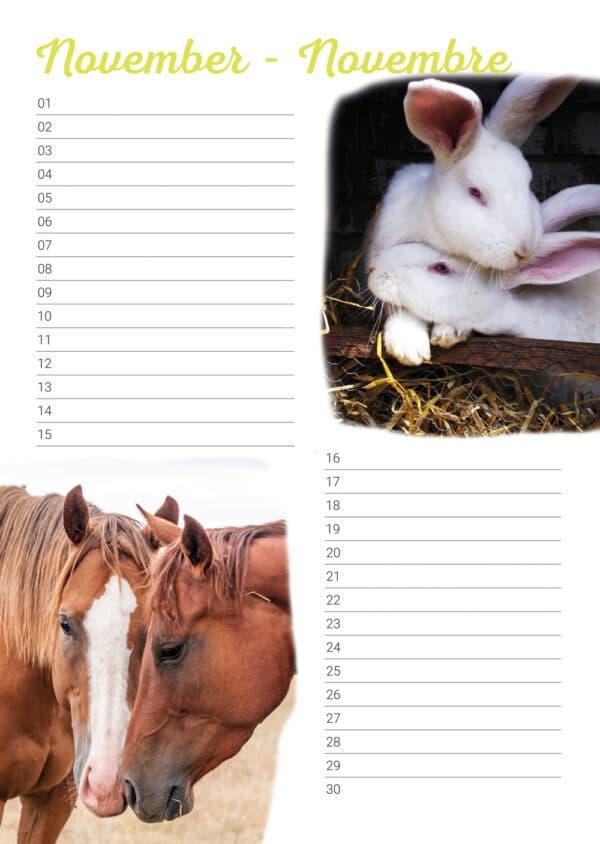 Calendrier d'anniversaire 'Animals in Love' Novembre