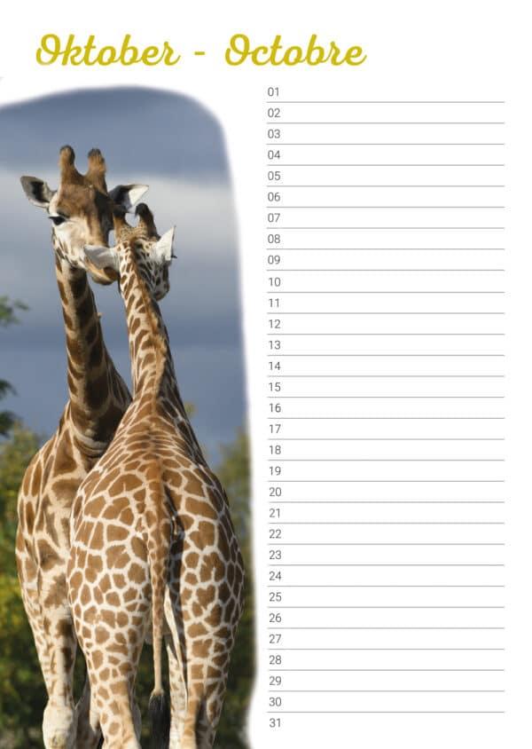 Calendrier d'anniversaire 'Animals in Love' Octobre