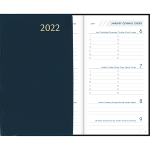 Visuplan relié 2022 Bleu
