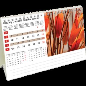 Calendrier de bureau Colours of Nature 2022 Janvier