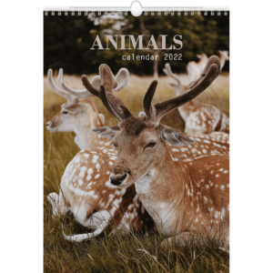 Calendrier mural Animals 2022